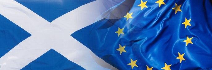 SIE-flags